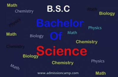 What is BSc Nursing? What Subjects are Included in BSc Nursing?